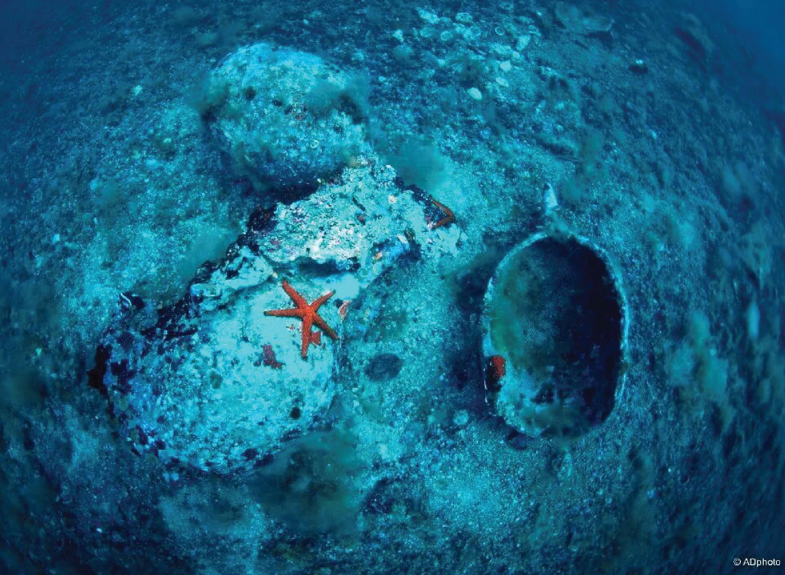 Fondale Isole Tremiti