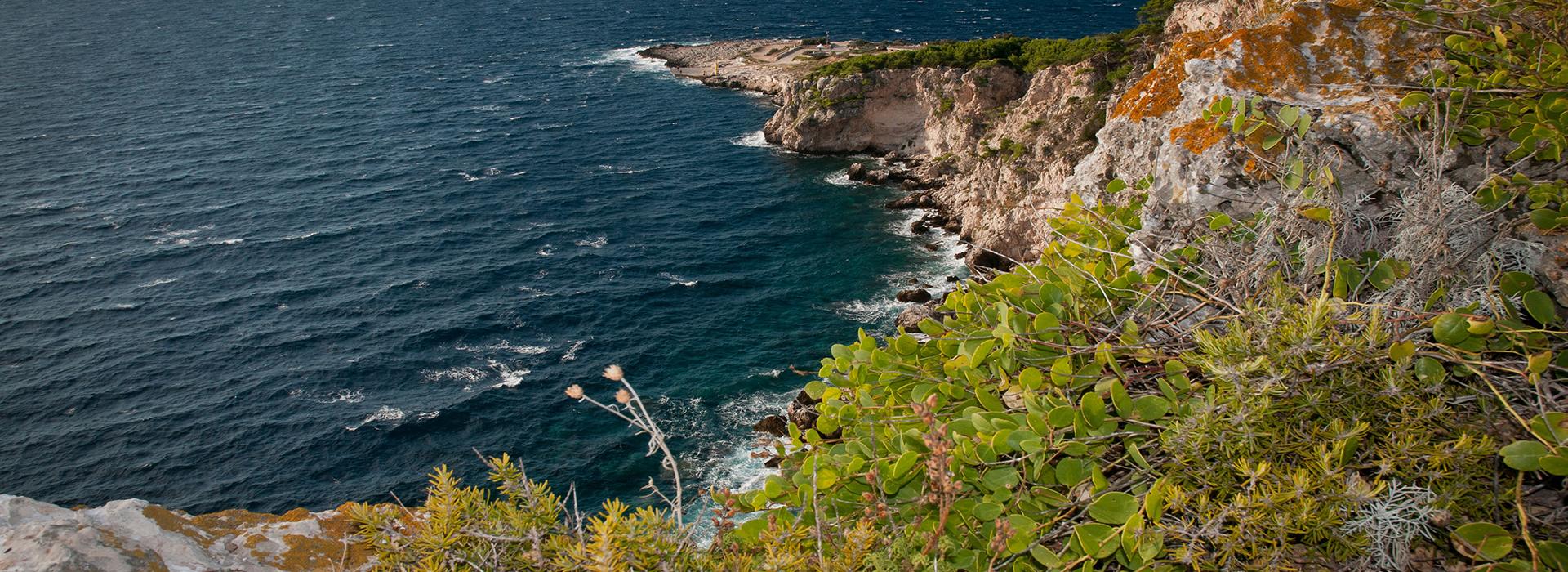 Ambiente Terrestre Isole Tremiti